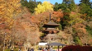紅葉の美しい金剛院三重の塔